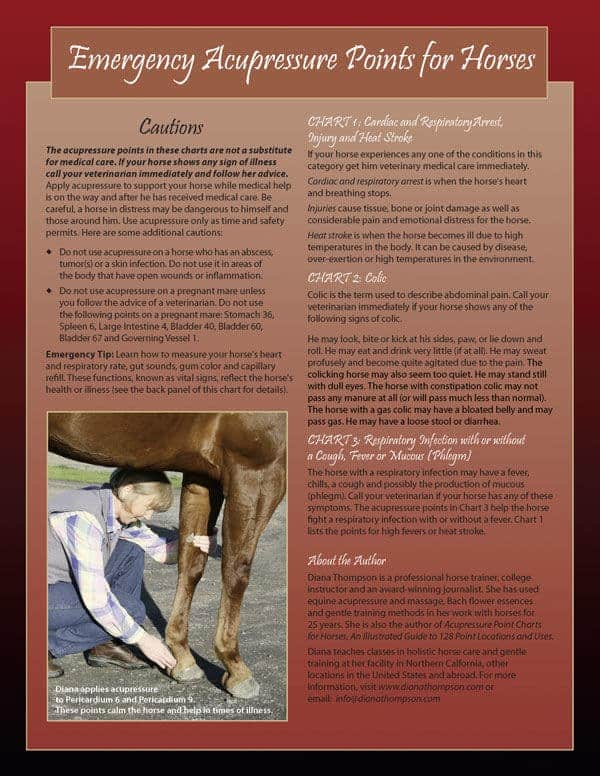 Emergency Acupressure Points for Horses - Six-Page Laminated Chart